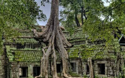 A Short Trip to Angkor