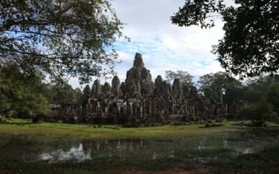 Most rare species in Angkor